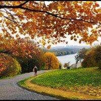 Осень в Коломенском... :: Nikanor