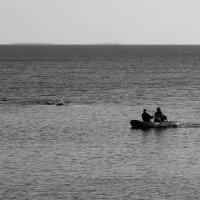 Направляясь к берегу :: Aнна Зарубина
