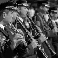 Первоклассная флейта :: Эдуард Цветков