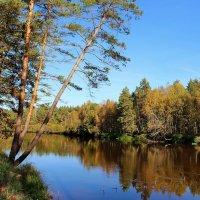 И с грустью жалуясь реке... :: Лесо-Вед (Баранов)