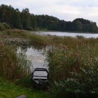 Пейзаж с лодкой. :: zoja