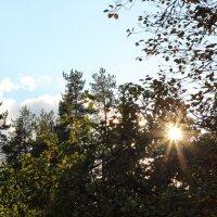 Осенние лучи :: Aнна Зарубина