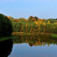 река Иткла, Кирилловский район, Вологодская область :: Михаил Валюженич