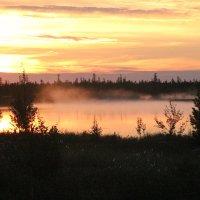 Туман над озером :: Аркадий Иваковский