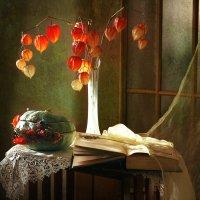 Осенние фонарики. :: lady-viola2014 -