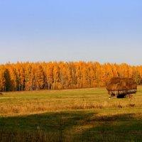 Золотая пора :: Нэля Лысенко