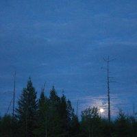 Восход полной луны :: val-isaew2010 Валерий Исаев