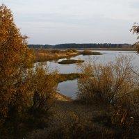 Осенний берег :: Виталий Житков