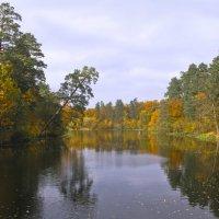 Лесное озеро осенью. :: Барбара