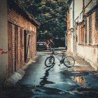 Street :: Asya Gosh