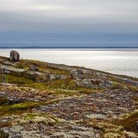 Белое море :: Сергей Батищев