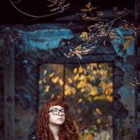 Рыжая осень :: Александр Кузнецов