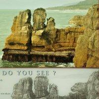 do you see? :: Petr Popov