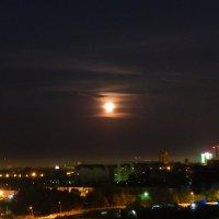 Луна. :: Анастасия Бережинская