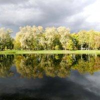 Осеннее отражение. :: Наталья Левина