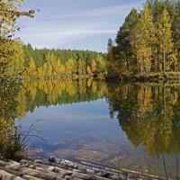 Осенняя вода. :: Анатолий Круглов