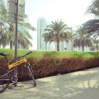 Краски Дубая :: Виктория Шапошникова