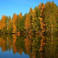 Осень. Озеро. Отражение :: Cветёлка ***