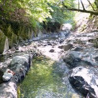 Каньон реки Сенора в районе Кварели. :: Игорь