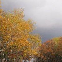 Осень :: Лена Минакова