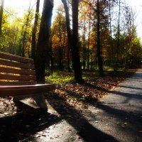 Осенний парк :: Ксения Грибанова