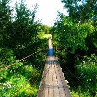 мостик :: vg154
