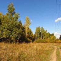Осень в Абрамцеве IMG_1697 :: Андрей Лукьянов