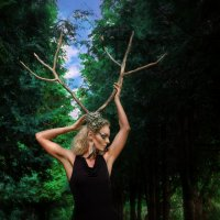 Житель леса :: Виктория Андреева