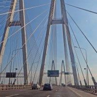 Вантовый мост :: alemigun