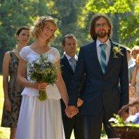 свадьба :: Dorosia safronova