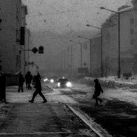 Четвертый день пурга... :: Сергей Митченко