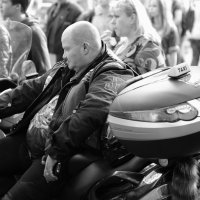 Таксист! :: Александр Степовой