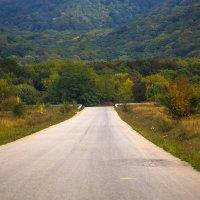 Дорога в горы :: Николай Николенко