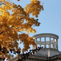 Ротонда и осень :: Вера Моисеева