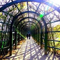 в светлом тоннеле :: Svetlana AS
