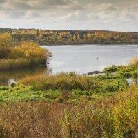 Осень :: Александр Ширяев