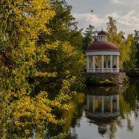 Autumn on the pond :: Dmitry Ozersky