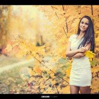 Осень :: Леонид Баландин