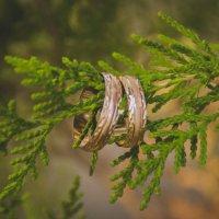 Свадьба1 :: Lina Dunenbaeva