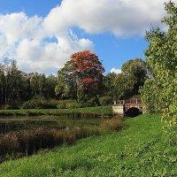 В Александровском парке Царского села :: Михаил Лесин