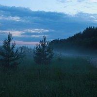 Туманная даль :: Ирина Соколова