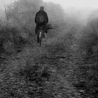 Утро туманное... :: Юрий Журавлев
