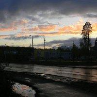 После дождя :: Надежда Ерыкалина