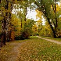 Осень в Кусково :: Наталья Лакомова