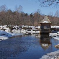 Купальня на реке Сольба. :: Ирина Нафаня