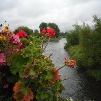 Реки Ирландии. :: zoja
