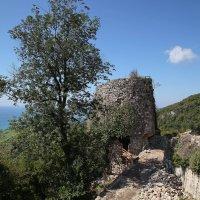 Анакопийская крепость в Новом Афоне :: Андрей Lyz