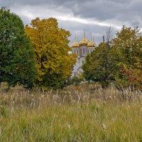 Осень краски расплескала :: Лидия Цапко