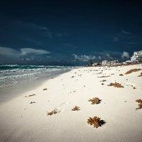 Побережье Канкуна.Мексика.Карибское море. :: Александр Вивчарик