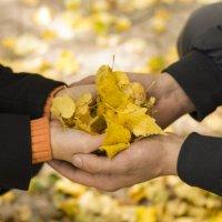 листья в ладонях :: Анна Шелест